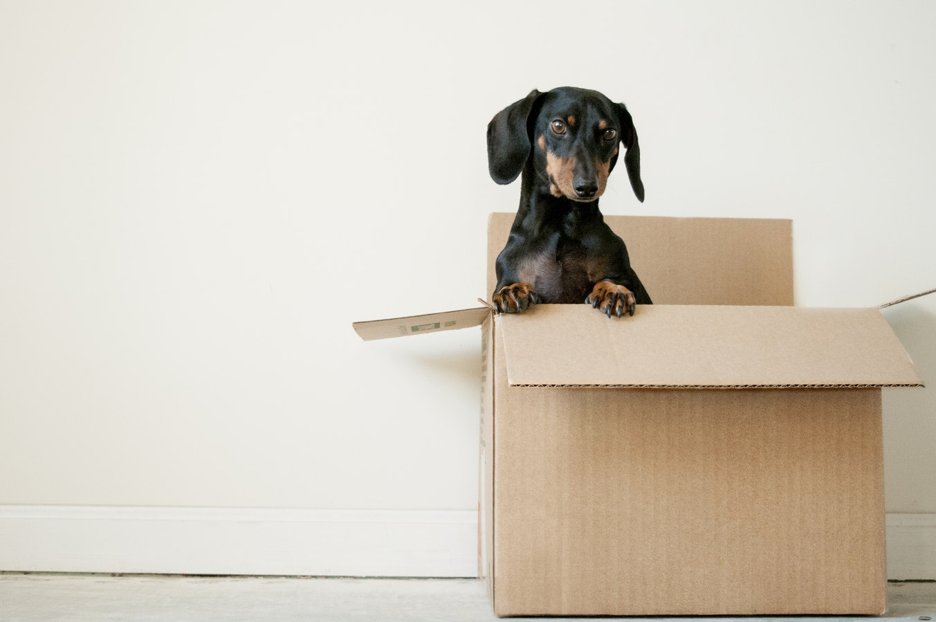 How to please today's home movers